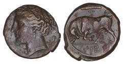Ancient Coins - SICILY Syracuse Hieron II 275-215 BC Æ Litra XF\UNC