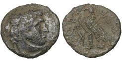 Ancient Coins - Ptolemaic Kingdom Ptolemy IX. 116-107 BC Bronze Scarce. VF Egypt