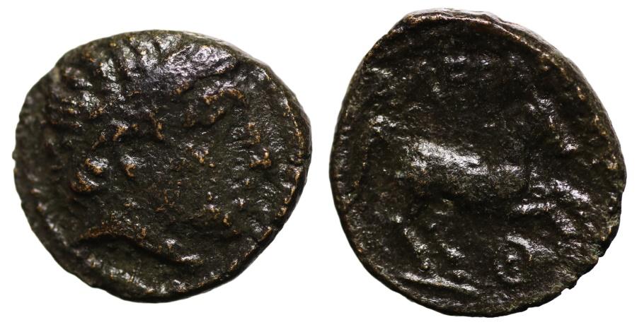 Ancient Coins - Alexander III the Great. 336-323 BC. AE16. Apollo. \ AΛEΞANΔPOY Horse