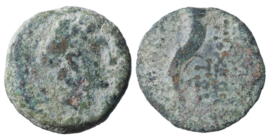 Ancient Coins - CIVIC ISSUE under Seleucids. Ake-Ptolemais, Phoenicia, AE16 Lepton, 125-121 BC
