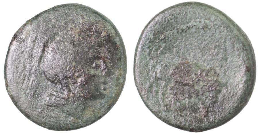 Ancient Coins - Pella, Macedonia, ca. 187-31 BC. AE21 Athena / bull grazing right