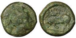 Ancient Coins - LUCANIA, Thourioi. 340 BC. Bronze. VF+