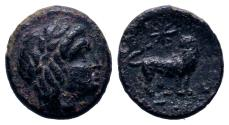 Ancient Coins - IONIA. Miletos. Ae (Circa 350-334 BC).