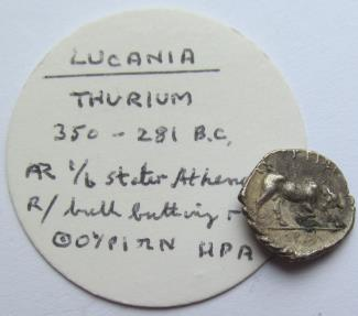 Ancient Coins - Lucania, Thurium / Thourioi. AR diobol - scarce variety with HPA in exergue = magistrate Hera. 350-268 B.C. - nicely struck for the type, with collector ticket -
