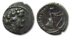 Ancient Coins - AR Denarius, C. Vibius C. f. C. n. Pansa Caetronianus, Rome 48 B.C.