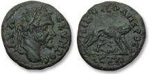Ancient Coins - AE 17 (assarion) Septimius Severus, Moesia Inferior - Nikopolis ad Istrum 193-211 A.D -She-wolf-