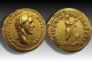 AV gold aureus Antoninus Pius as Caesar - struck under emperor Hadrian - Rome mint 138 A.D. - AVG PIVS P M TR P COS DES II - beautiful coin -