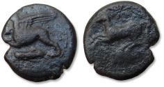 "Ancient Coins - Sicily, ""KAINΩN"" issue. 20mm AE unit - possibly struck under Dionysios II - circa 367-357 B.C. - prancing horse, griffon & grasshopper symbol -"