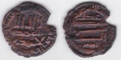 World Coins - Idrisid AE AH 206