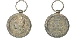 World Coins - France, Campagne du Tonkin-Chine-Annam, Medal, 1883-1885, Excellent Quality