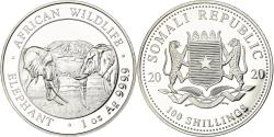 World Coins - Coin, Somalia, Elephant, 100 Shillings, 2020, Proof, , Silver, KM:New