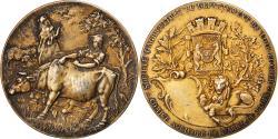 World Coins - France, Medal, Agriculture, Comice Agricole de Blois, Loir-et-Cher, Erdmann