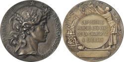 World Coins - France, Medal, Exposition Marché aux Vins de la Champagne, Epernay, Bottée