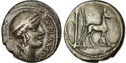 Ancient Coins - Coin, Plancia, Denarius, 55 BC, Rome, , Silver, Crawford:432/1