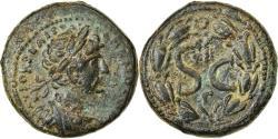 Ancient Coins - Coin, Seleucis and Pieria, Hadrian, As, 117-138, Antioch, , Bronze