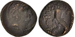 Ancient Coins - Seleucia, Antiochus VIII, Bronze AE20, Antioch, , Sear:7153