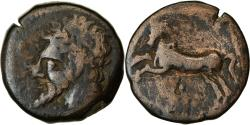 Ancient Coins - Coin, Numidia (Kingdom of), Bronze Æ, 148-118 BC, , Bronze