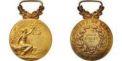 World Coins - France, Jeux Floraux du Languedoc, Medal, 1907, Excellent Quality, Pillet