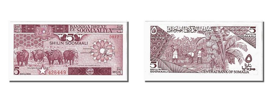 World Coins - Somalia, 5 Shilin = 5 Shillings, 1987, KM #31c, UNC(65-70), 426449