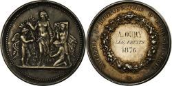 World Coins - France, Medal, Société d'Horticulture d'Eure-et-Loir, 1876, Borrel.A