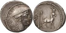 Denarius, Plancia, 55 BC, Roma, AU(50-53), Silver, Sear:5# 396