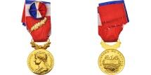 World Coins - France, Médaille d'honneur du travail, Business & industry, Medal, 2009