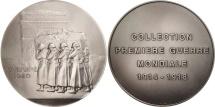 World Coins - France, Medal, 11 novembre 1920, History, Dammann, MS(65-70), Silvered bronze