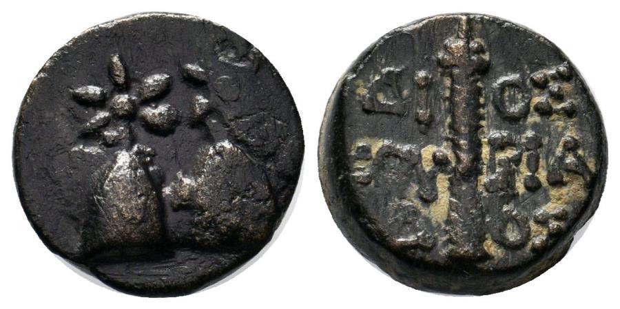 Ancient Coins - KOLCHIS DIOSKOURIAS  Æ 16 MM & 5.6 GR