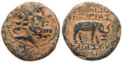 Ancient Coins - SYRIA SELEUKIA and PIERIA APAMEA Æ  8.6 GR & 22 MM