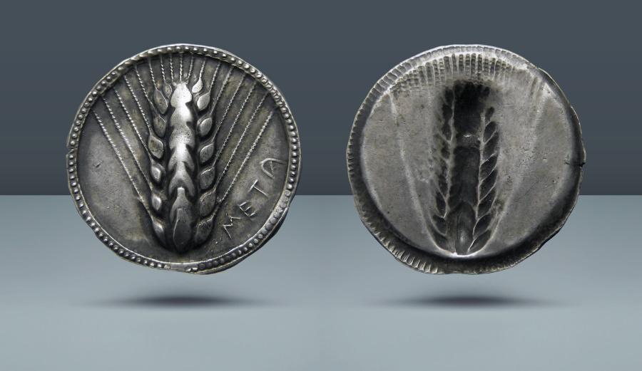 Ancient Coins - LUCANIA, Metapontum. c. 520-500 BC. AR Stater