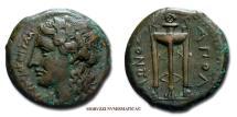 Ancient Coins - Sicily TAUROMENION / Tauromenium Bronze 275-210 BC greek coin