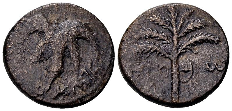 Ancient Coins - Judaea. Bar Kochba Revolt AD 132-135, AE 24mm (10.28 g) undated, attributed to year three, AD 134/35