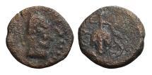 Ancient Coins - LIXUS. Mauretania. AE17. Circa 50-1 BC. Head of Chusor-Ptah / bunch of grapes on vine. SCARCE.