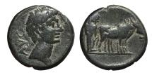 Ancient Coins - AUGUSTUS AE18 27 BC-14 AD. Uncertain, Philippi? mint. Two pontiffs driving team of oxen right.
