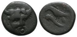 Ancient Coins - Rare Istros Rivergod Small bronze