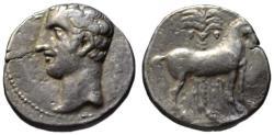 Ancient Coins - Carthago Nova AR shekel - Hannibal & Horse with palm tree - Very rare