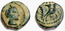 Ancient Coins - NABATAEANS OF PETRA. ARETAS IV. PHASAEL THE DAUGHTER. AE