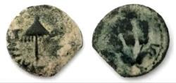 Ancient Coins - Judaea, Herodians. Agrippa I. 37-43 AD. Æ Prutah