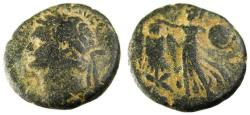 Ancient Coins - Judaea. Caesarea Maritima. Domitian, 81-96 A.D.