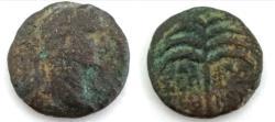 Ancient Coins - JUDAEA, Sepphoris (Diocaesarea). Trajan. 98-117 CE. Æ.