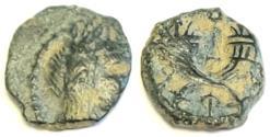 Ancient Coins - Nabatean Kingdom. Aretas IV 9BC - 40 AD.