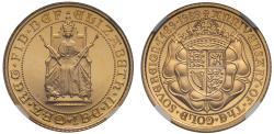 World Coins - Elizabeth II 1989 proof Half-Sovereign PF69 ULTRA CAMEO