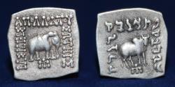 Ancient Coins - INDO-GREEK Apollodotus I, ca. 180-160 BC, AR Square Drachm, 2.43g, 20mm, ABOUT EF