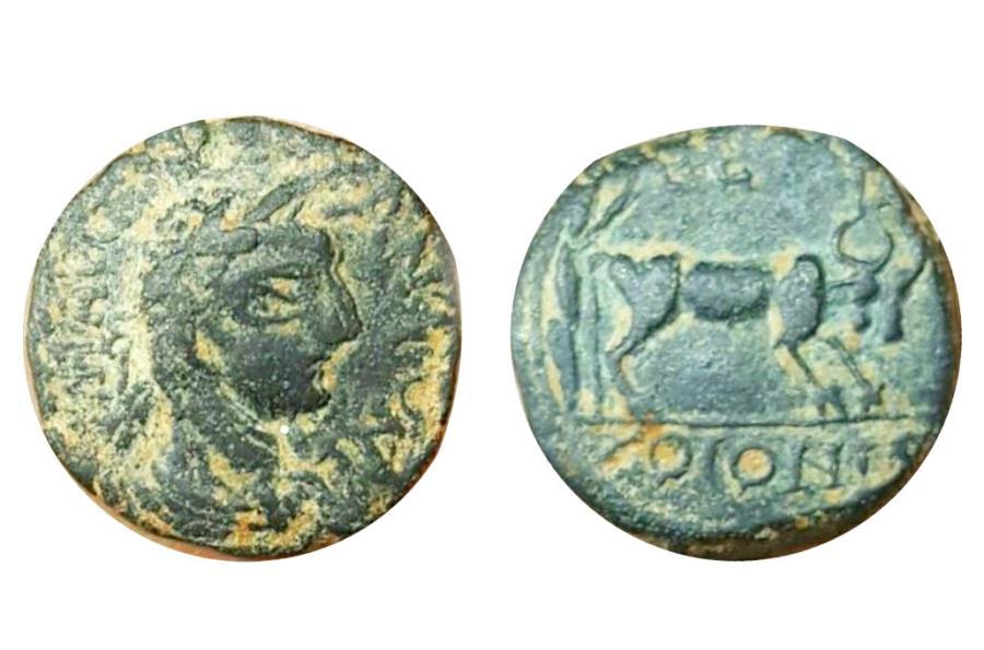 Ancient Coins - Elagabalus, Decapolis. Petra. AD 218-222.
