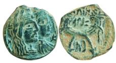 Ancient Coins - Aretas with shaquilat.
