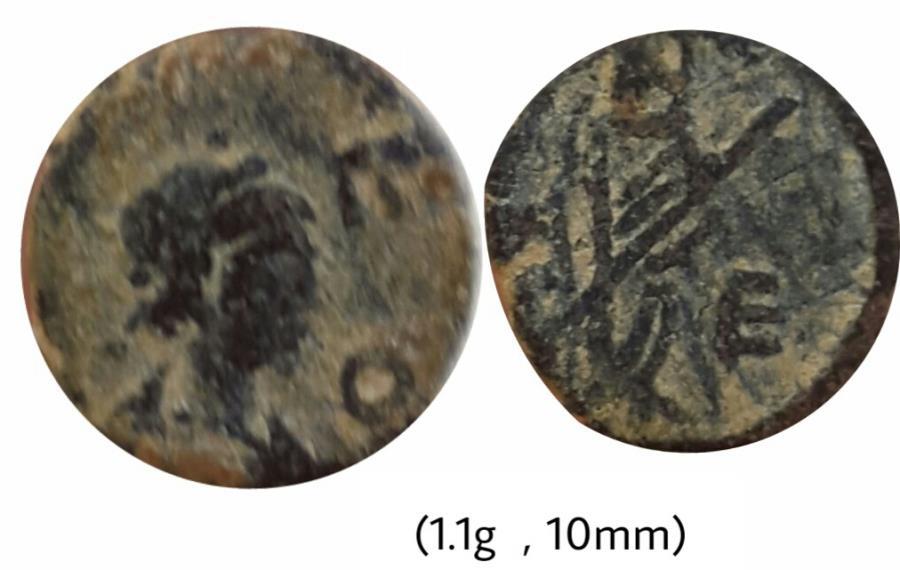 Ancient Coins - Leo I
