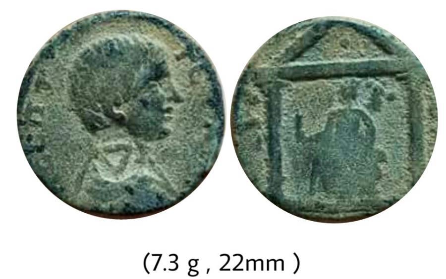 Ancient Coins - Geta.