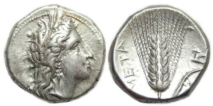 Ancient Coins - Metapontion in Lucania. ca. 350 to 330 BC. Silver stater.