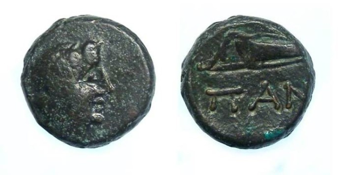 Ancient Coins - Thrace, Pantikapaion, AE 13. 3rd to 2nd century BC.