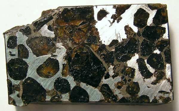 Ancient Coins - Brahin pallasite meteorite. Cut slice.